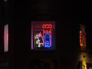Neon @ the Madison Children's Museum 2016